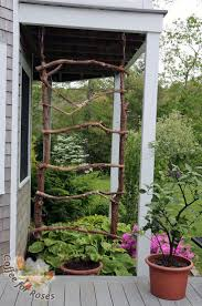 The trellis has been hung! I used the grapevine garland to hide the wires  that
