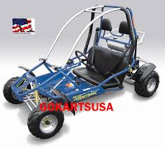 scorpion rt 150cc go kart blue lightning 150cc go kart