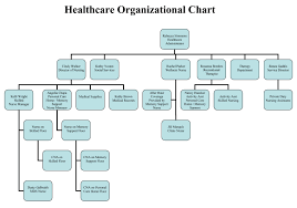 Clinic Organizational Chart Template What Is The Purpose Of An Organizational Chart In Health
