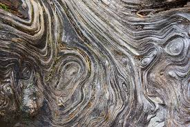 Driftwood Grain Maze How To Photograph Texture And Detail