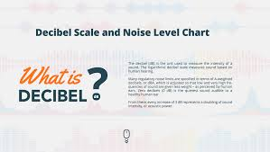 Sound Level Comparison Chart Colorful Interactive Infographic Of The Decibel Scale And