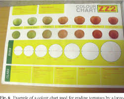 Tomato Color Chart Figure 6 From A Review Of Postharvest Handling And Losses In