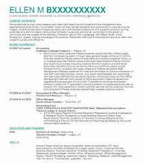 essay template latex resume