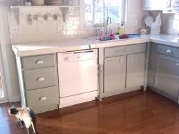 Spraying Kitchen Cabinets White Dark Brown Kitchen Cabinets Most