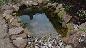 Pond Edges Design Ponds With Rock Edging And Pebbles Bbc Gardeners World