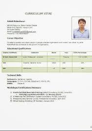 Curriculum Vitae Online Gratis Sample Template Example Ofexcellent