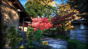 Momiji Behind Tea House Japanese Landscape Wallpaper Preview