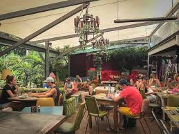 Treehouse On Belongil Byron Bay Review  Get Forked And FlyTreehouse Byron Bay