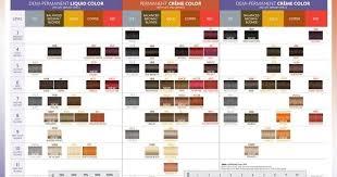 Beth Minardi Signature Hair Color Charts