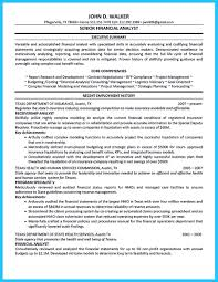 Example Of Financial Analyst Resume It Operations Sample Free