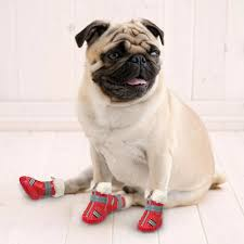 non slip leather waterproof dog shoes dog boots adjustable pet dog winter shoes