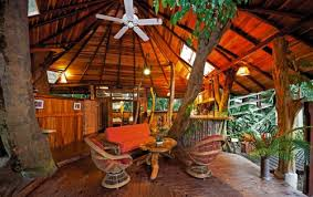 luxurious tree house. Why Would Anyone Want To Stay At A Hilton Hotel Chain When You Could In Luxury Tree House Luxurious