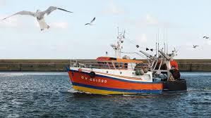 Brexit : comment Bruxelles compte venir en aide aux pêcheurs ...