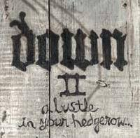 <b>Down</b> - <b>Down II</b>: A Bustle in Your Hedgerow (album review ...