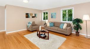 gorgeous living room rugs for wood floors living room with hardwood floors carpet in seattle wa
