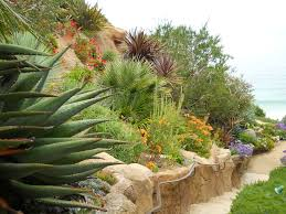 rogers gardens e2 80 93 ca friendly design ideas wow flowers a the only way to