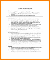 Career Summary Examples 8 Resumes Professional Summary Examples Activo Holidays
