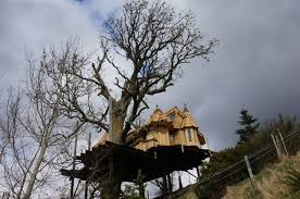 Blue Forest Tree Houses U2013 Glamping At Amberley Castle  GlampingcomTreehouse Scotland