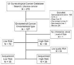 Flow Chart Of Patients Included In The University Of Iowa