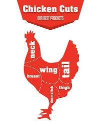 en cuts infographic set of meat