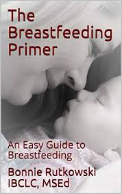 Amazon.com: The Breastfeeding Primer: An Easy Guide to ...
