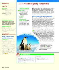 Endothermy Vs Ectothermy Venn Diagram Chapter 33 2 Billings West High School