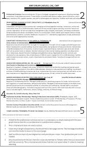 Resume Professional Summary Examples Professional Resume Summary Resumes Example With Technology 91