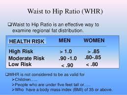 Body Mass Index Waist Hip Ratio
