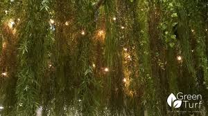 fairy lights in artificial plants