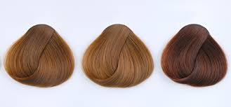 Best Brunette Hair Colour Shades Expert Advice Loreal