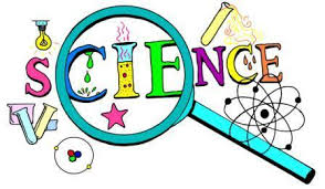 Science Project Title Page Science Avenue Primary School