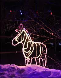 Groupon Wild Lights At The Zoo Cheyenne Mountain Zoo Christmas Lights