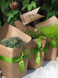 wrap potted plants in craft paper and tie with a pretty ribbon great party or wedding favor