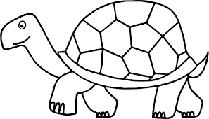 Free Printable Turtle Coloring Page Ninja Turtles Coloring Pages