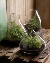 indoor rock garden ideas. Garden: Small Indoor Garden Ideas Rock
