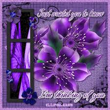 Purple Flower Quotes Thinking Of You Purple Thinking Of You Purple Flowers Photo