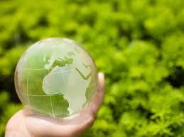 Resultado de imagem para QUEM PRESERVA O meio ambiente NA BAHIA