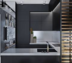 ... Monochromatic Color Schemes. Matte Black Kitchen Cabinetry
