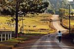 imagem de Westfália Rio Grande do Sul n-1