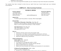 Resume Objective Examples No Work Experience Objectives For The Resume Impressive Objective Exampless Photo 47