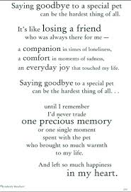 Loss Of A Pet Quotes Mesmerizing Inspirational Quotes About Losing A Pet Pet Less For The Love Of