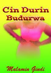 Errol d gindi, e gindi, errol gindhi, dpm e gindi. Cin Durin Budurwa Adult Only 18 By Malamin Gindi Okadabooks