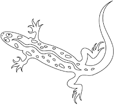 Small Picture Coloring Pages Animals Dragon Monster Coloring Page Source
