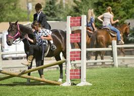 English-<b>style equestrians</b> show <b>their</b> stuff | Teton County Fair ...