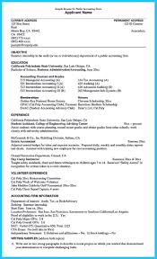 Auditing Resumes Making A Concise Credential Audit Resume