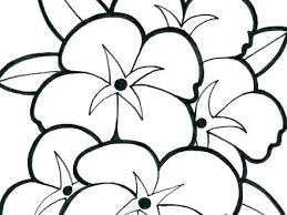 Free Printable Flower Coloring Pages For Adults Free Coloring