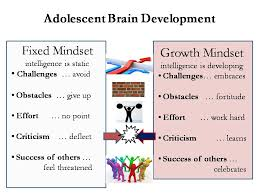 Fixed Vs Growth Mindset Chart Growth Mindsets Linder Educational Coaching Tutoring In