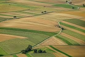 Старобільською місцевою прокуратурою вжито заходів щодо повернення у розпорядження держави земельної ділянки вартістю понад 300 тис. грн.