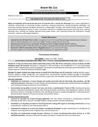 Bussines Plan Businesson Resume Example Awesome Samples Program