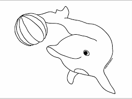 Small Picture Dolphin Coloring Pages Coloring Coloring Pages